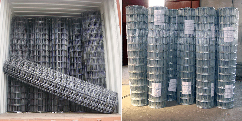 Galvanized-Welded-Wire-Mesh